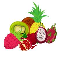 Piure-uri fructe congelate