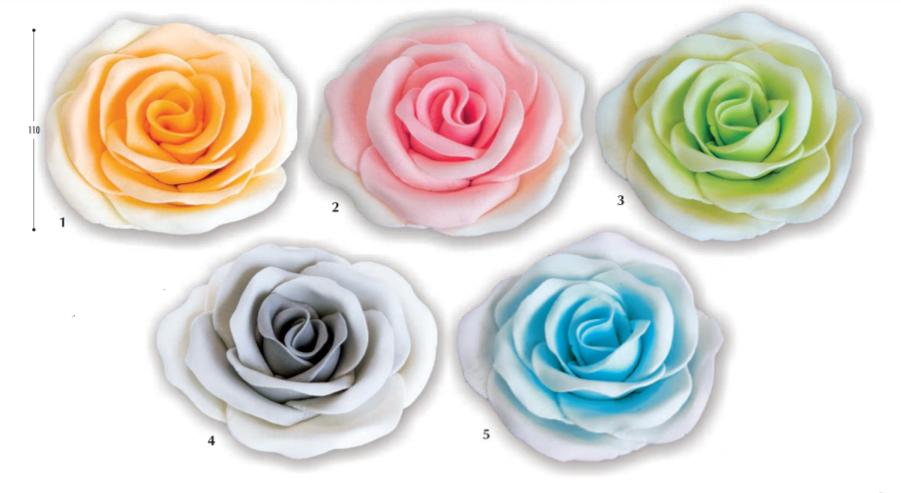 Trandafiri  0104 DEK