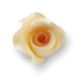 Trandafir din zahar mediu culoarea ceaiului 051314 PJT, set 20 buc