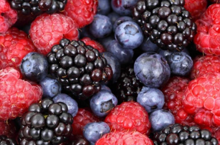 Piure de fructe de padure 100% TUTTAFRUTTA, T3FRB 1,5 KG aseptic